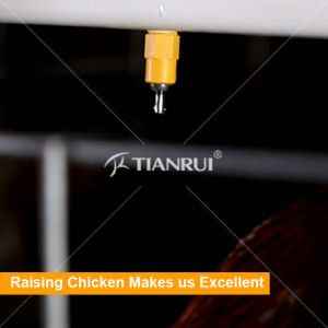 Automatic Stainless Steel Nipple Drinkers for Chicken pictures & photos