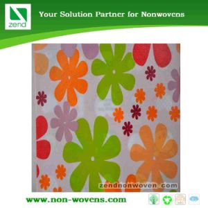 Printing PP Non-Woven Fabric (Zend 05-027) pictures & photos