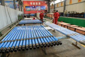 Well Pump Single Screw Pump Progressive Cavity Pump Glb75-14 pictures & photos