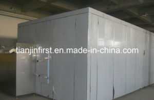 Fluidized Freezer for Fruit and Vegetable IQF Quick Freezing pictures & photos