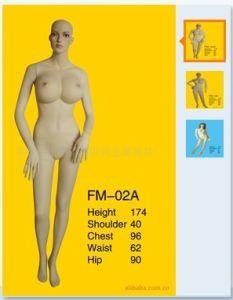 High Quality Fiberglass Mannequins Torso 1022 pictures & photos