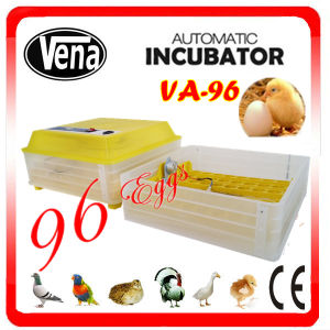 Wholesale Price 2014 Best Selling CE Approved 98% Hatching Rate Used Egg Incubators pictures & photos