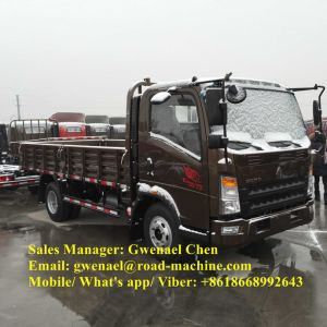 Sinotruk HOWO 4X2 3 Ton Light Duty Cargo Truck, LHD/Rhd pictures & photos