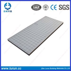 Rectangular Fiber Glass Manhole Cover with SGS pictures & photos