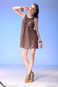 Lady Fashion Summer Dress (4080)