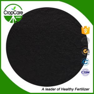 Price Powder Humic Acid Fertilizer pictures & photos