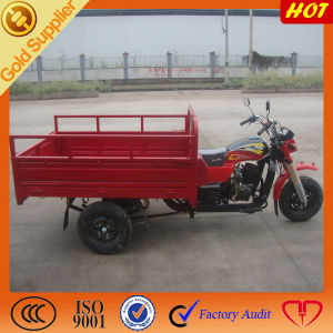 China Hot Sale Cargo Motor Tricar pictures & photos