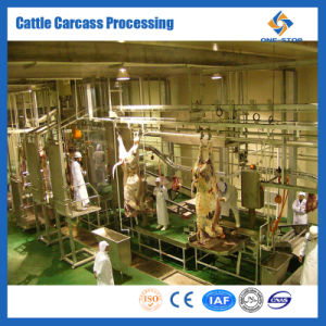 Cattle Slaughtering Line Cow Processing Line Slaughtering Equipment pictures & photos