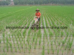 Paddy Weeder, Rice Weeder, Rice Weeding Machine pictures & photos