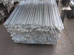 Scaffold Formwork Tie Rod pictures & photos