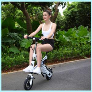 Ecorider E-Bicycle Brushless 250W 36V Folding Electric Bike pictures & photos