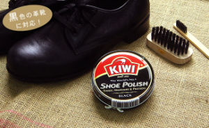 Shoes Polish (brightener) 40g 20g pictures & photos