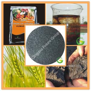 855% Water Soluble Potassium Huamte Fertilizer pictures & photos