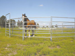 Oval Rail Livestock Horse Corral Yard Panels Fence pictures & photos