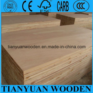 Cheap 18mm Poplar / Pine / Paulownia / Falcata Core Blockboard pictures & photos