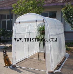 Garden Storage Shed, Transparent Tent, Hothouse Cover, Hothouse (TSU-162G) pictures & photos