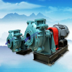 Coal Water Slurry Pump pictures & photos