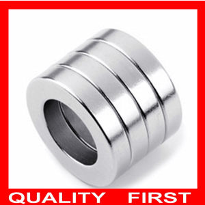 Super Strong Neodymium Magnet Rare Earth Magnet