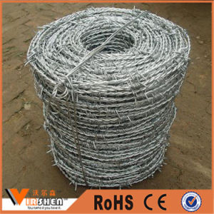 Hot Dipped Galvanized Stainless Steel Double Twist Barbed Wire pictures & photos