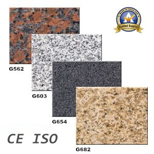 Cheap Natural Granite for Tile, Slab&Countertop pictures & photos