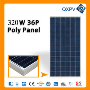 36V 320W Poly Solar Panel pictures & photos