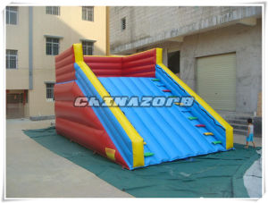Best Sale Inflatable Slide for Zorb Ramp pictures & photos