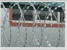 Bto-22 Hot Dipped Galvanized Military Concertina Razor Wire/Security Fence pictures & photos