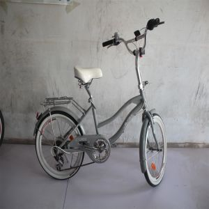 Manufacturer Supplier Adult Bike From China pictures & photos