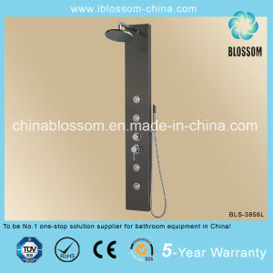 China Made Massage Stainless Steel Shower Panel (BLS-3856L) pictures & photos