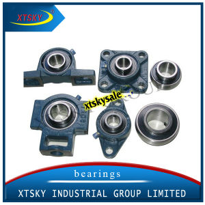 Inch Size Pillow Block Bearing (various) pictures & photos