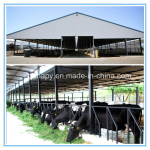 Modern Modular Prefabricated House for Cows pictures & photos