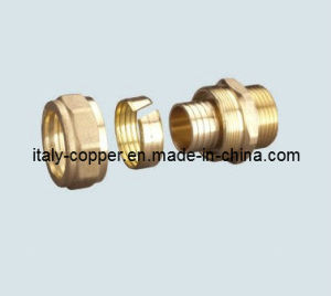 Brass Compression Coupling for Pex Fitting pictures & photos
