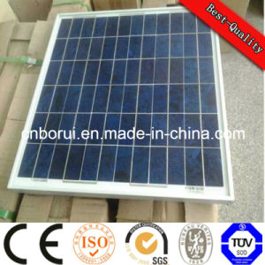 01 Black Frame Monocrystalline Poly Solar Panel 10W-320W pictures & photos