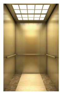Fjzy-High Quality and Safety Passenger Elevator Fjk-1620 pictures & photos