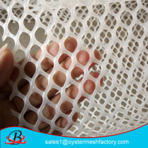 PE Netting Plastic Mesh in Good Quality