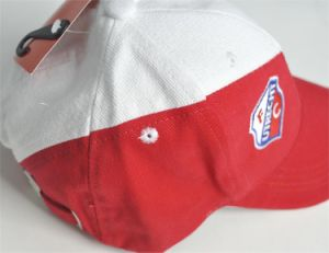 Sports Cap for Promotional Purposes (004) pictures & photos