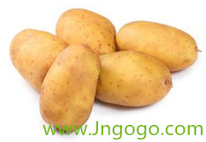 New Crop Export Good Quality Chinese Fresh Potato pictures & photos