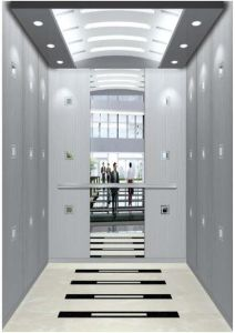 Home Hydraulic Villa Elevator with Italy Gmv System (RLS-246) pictures & photos