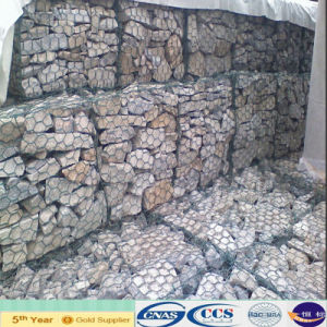 Superior Quality Galvanized Gabion Mesh (XA-GM10) pictures & photos