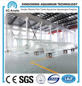 Customized Transparent UV PMMA Tunnel of Aquarium Company pictures & photos