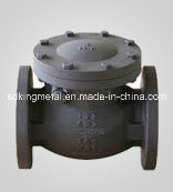 Cast Iron Flange 125lbs End Check Valve pictures & photos