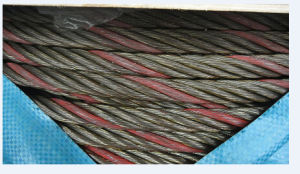 Ungalvanized Steel Wire Rope with One Color Strand pictures & photos