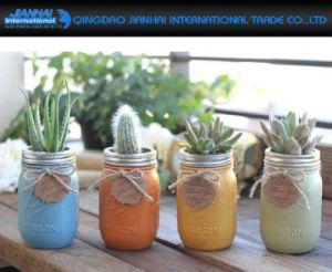 Glass Flower Planter Pot Mason Jar for Decoration pictures & photos