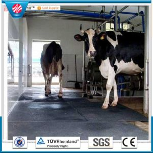 Cow Floor Mats/Interlocking Mats/Stable Rubber Matting pictures & photos