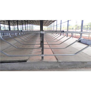 Best Quality Cow Rubber Flooring, Horse Rubber Matting pictures & photos