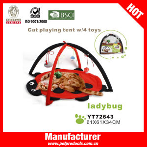 China Factory Cat Bed, Cat Hammock Bed (YT72643) pictures & photos