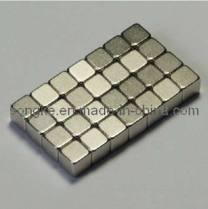 Rare Earth Magnet S-005