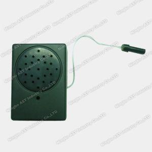 Motion Sensor Talking Box, Light Sensor Voice Module pictures & photos