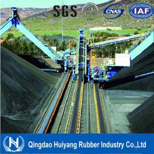Professional Manufacture Steel Cord Conveyor Belt