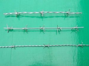 Hotsales Galvanized or PVC Barbed Iron Wire pictures & photos